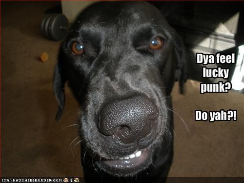 Dya feel lucky punk? Do yah?!