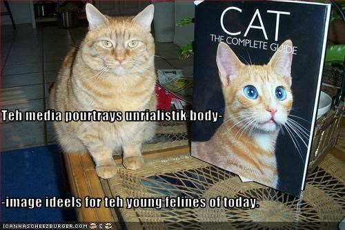 Teh media pourtrays unrialistik body- -image ideels for teh young felines of today.
