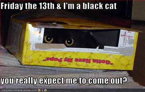 Friday the 13th & I'm a black cat  you really expect me to come out?