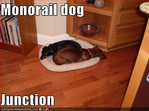 Monorail dog  Junction