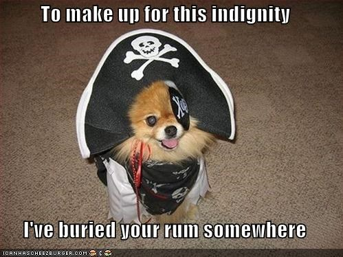 To make up for this indignity  I've buried your rum somewhere