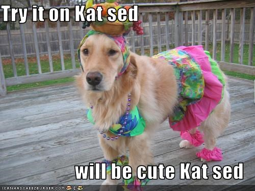 Try it on Kat sed  will be cute Kat sed