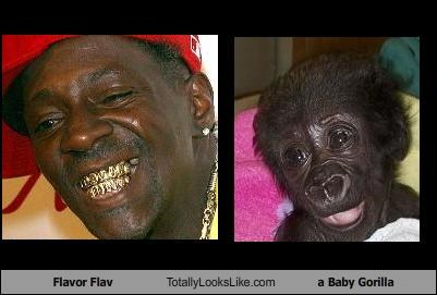 Flavor Flav Totally Looks Like a Baby Gorilla
