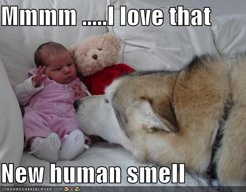 Mmmm .....I love that  New human smell
