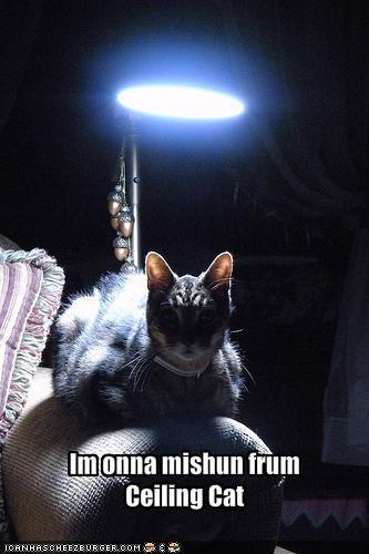 Im onna mishun frum Ceiling Cat