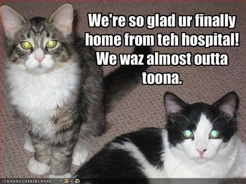 We're so glad ur finally home from teh hospital! We waz almost outta toona.