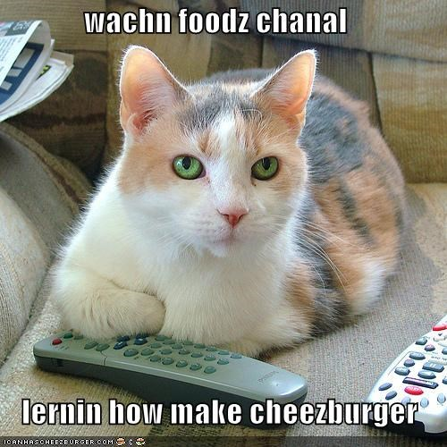 wachn foodz chanal    lernin how make cheezburger