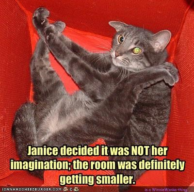 Janice decided it was NOT her imagination; the room was definitely getting smaller.