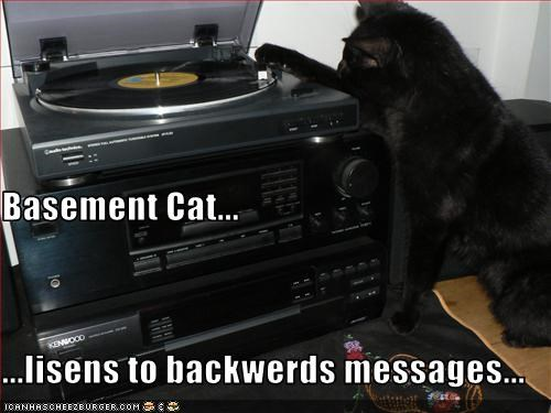 Basement Cat... ...lisens to backwerds messages...