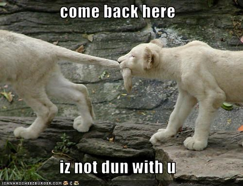 come back here  iz not dun with u