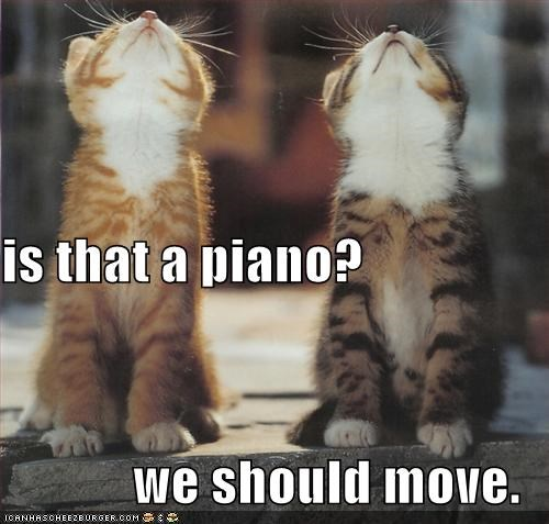 is that a piano? we should move.