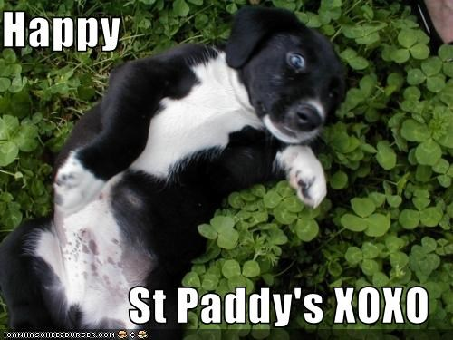 Happy  St Paddy's XOXO