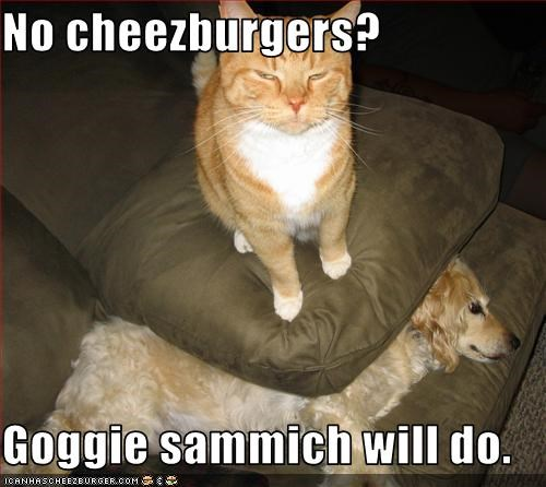 No cheezburgers?  Goggie sammich will do.