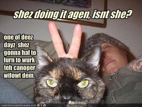 shez doing it agen, isnt she?