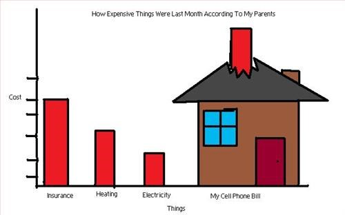 bills,cell phone,expensive,insurance,parents