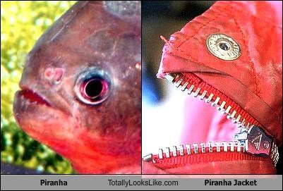 Piranha Totally Looks Like Piranha Jacket