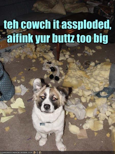teh cowch it assploded, aifink yur buttz too big
