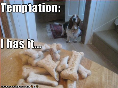 Temptation: I has it...