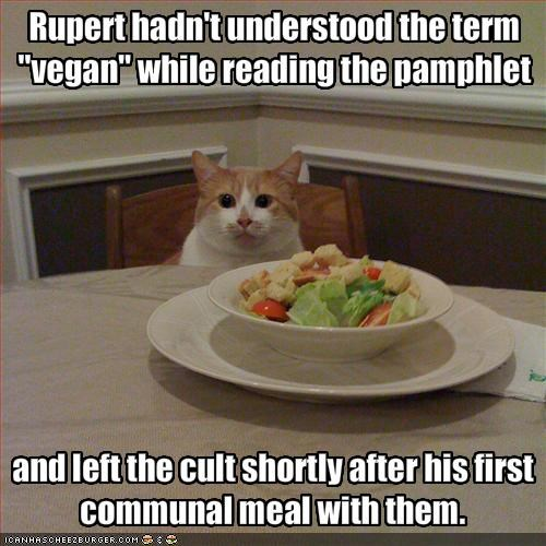 "Rupert hadn't understood the term ""vegan"" while reading the pamphlet"