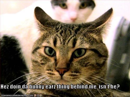 Hez doin da bunny earz thing behind me, isn't he?
