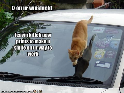 Iz on ur winshield