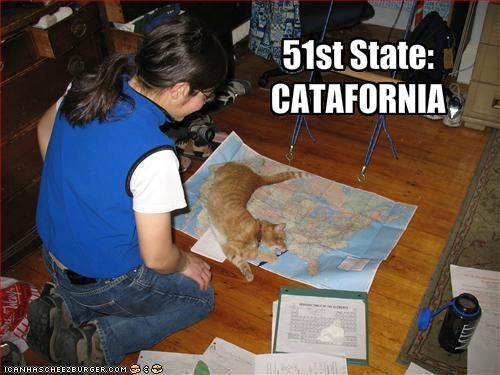 ginger,map,world domination
