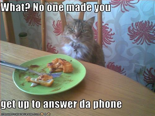 What? No one made you  get up to answer da phone