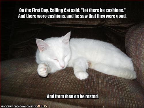 "On the First Day, Ceiling Cat said: ""Let there be cushions.""
