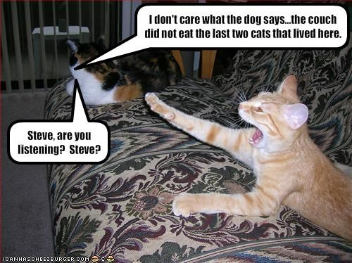 I don't care what the dog says...the couch did not eat the last two cats that lived here.