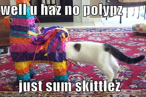 well u haz no polypz  just sum skittlez