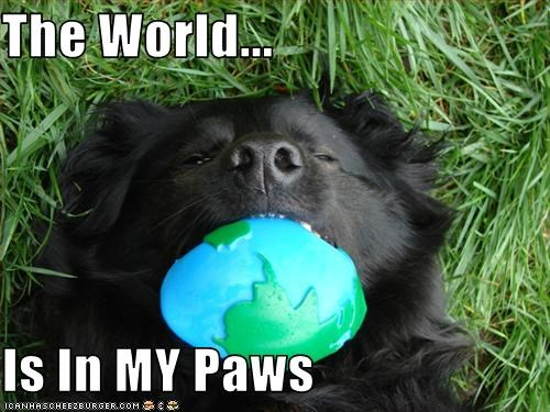 The World...  Is In MY Paws