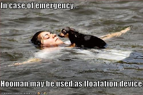 In case of emergency...  Hooman may be used as floatation device.
