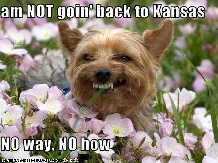 am NOT goin' back to Kansas  NO way, NO how