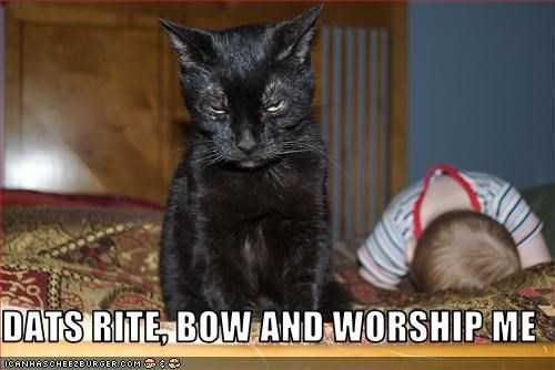 DATS RITE, BOW AND WORSHIP ME