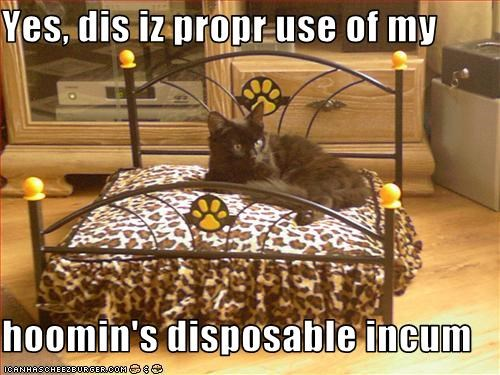 Yes, dis iz propr use of my  hoomin's disposable incum
