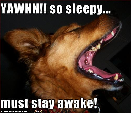 YAWNN!! so sleepy...  must stay awake!