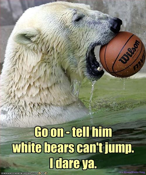Go on - tell him 