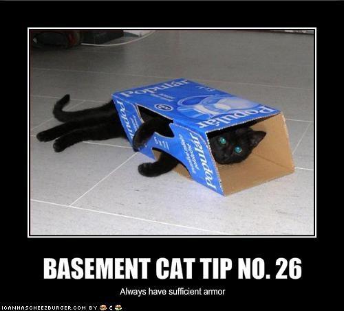 BASEMENT CAT TIP NO. 26