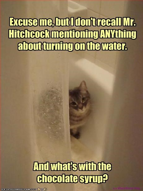 Excuse me, but I don't recall Mr. Hitchcock mentioning ANYthing about turning on the water.