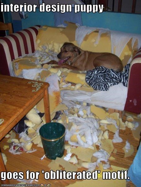 interior design puppy  goes for 'obliterated' motif.