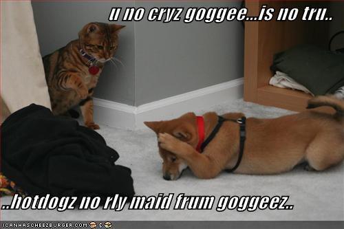 u no cryz goggee...is no tru..  ..hotdogz no rly maid frum goggeez..