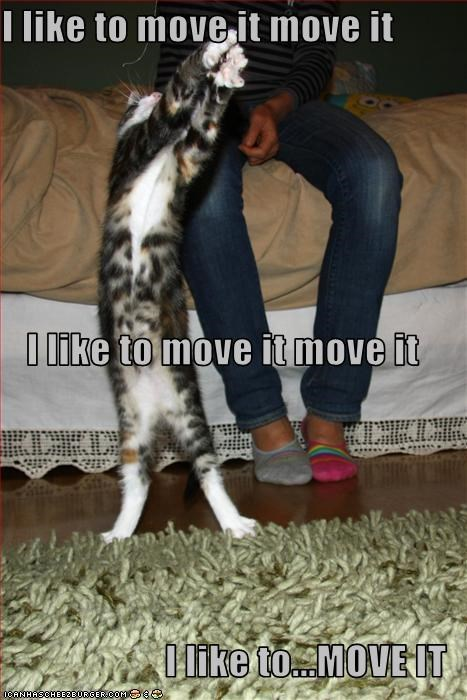 I like to move it move it I like to move it move it I like to...MOVE IT