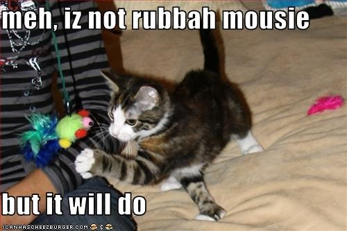 meh, iz not rubbah mousie  but it will do