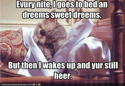 Evury nite, I goes to bed an dreems sweet dreems.