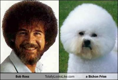 Bob Ross Totally Looks Like a Bichon Frise