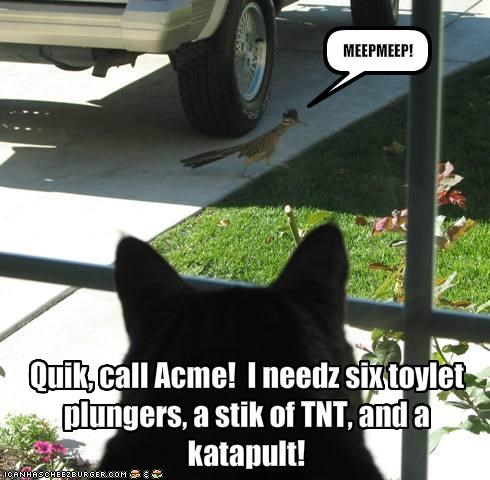 Quik, call Acme!  I needz six toylet plungers, a stik of TNT, and a katapult!