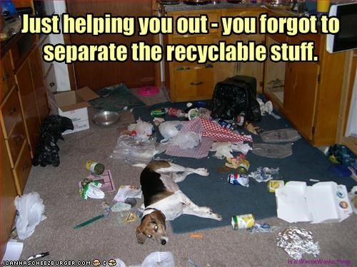Just helping you out - you forgot to separate the recyclable stuff.