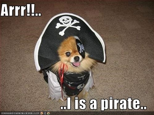 Arrr!!..  ..I is a pirate..