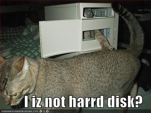 I iz not harrd disk?