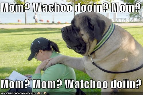 Mom? Wachoo dooin? Mom? Watchoo dooin?  Mom? Mom? Watchoo doiin? Mom?